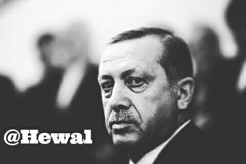 اردوغان؛ آری یا خیر؟