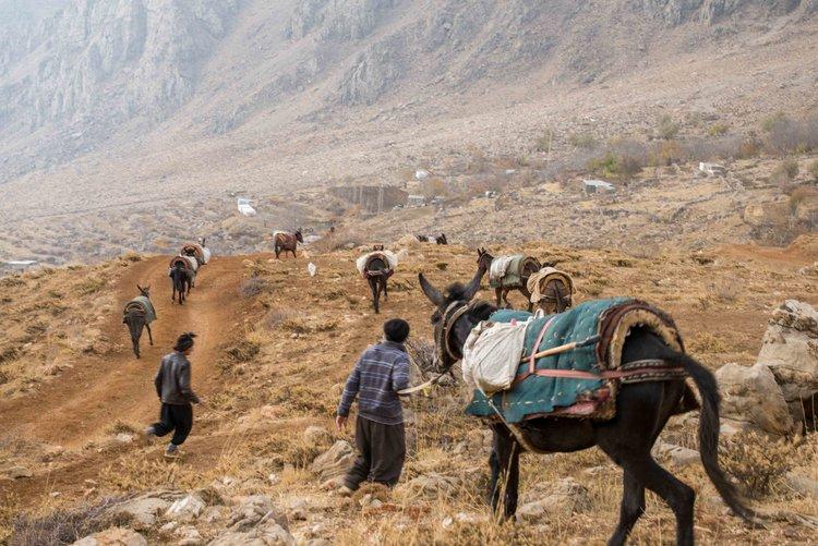 تصاویر ماسیمو رومی عکاس ایتالیایی از کولبران کُرد در سفر به مناطق کُردنشین ایران
