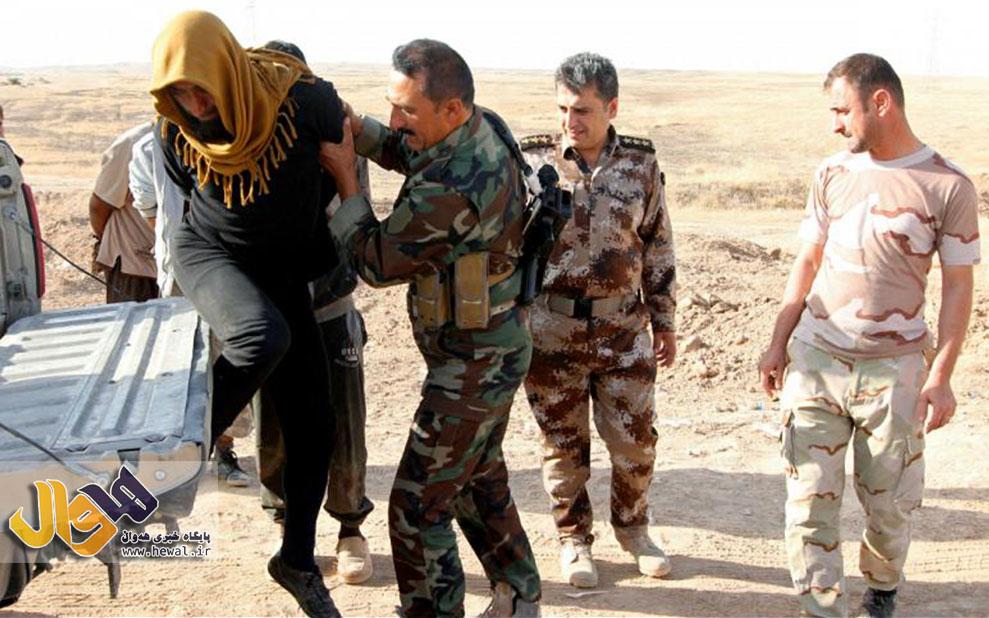 دستگیری داعش