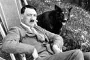 اسناد محرمانه سازمان سیا از شایعه زنده بودن هیتلر
