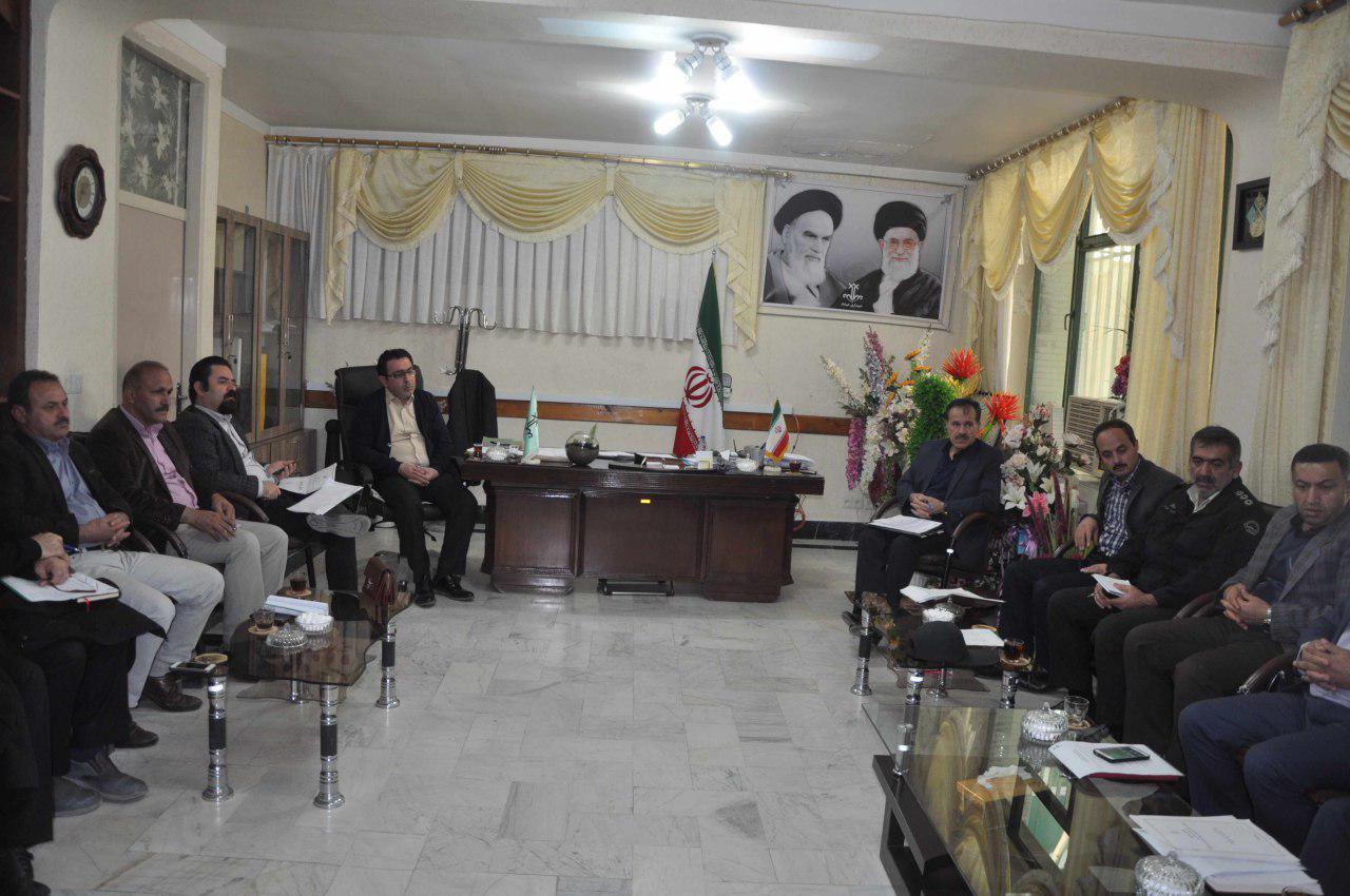 برگزاری جلسه شورا و شهردار مهاباد در مورد نحوه ی راه اندازی سایت نگهداری سگهای بلاصاحب